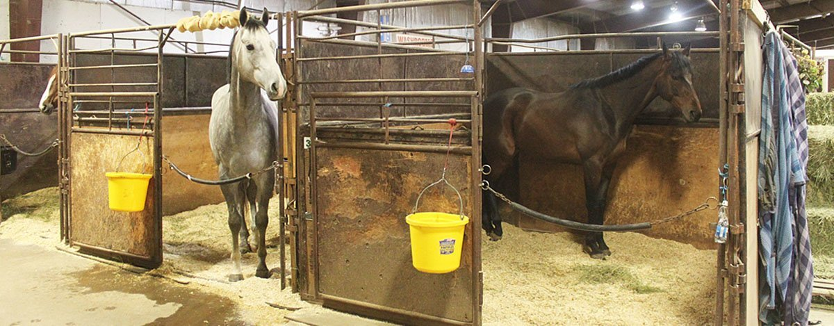 Horse Stalls Available